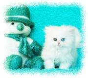 Blue Eyed White Persian kittens for sale